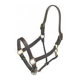 "Deluxe Leather Track 1"" Horse Halter Valley Vet Supply"